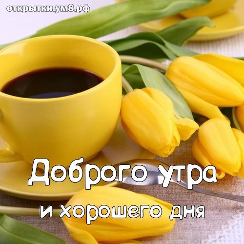 На каждый день Доброго утра и хорошего дня