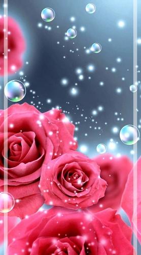 Обои для iPhone Цветы